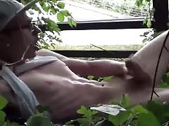 In the shrubs - im Gebeusch